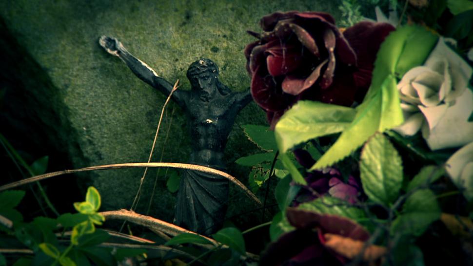 Cmentarz w  Miedziance w TVN24