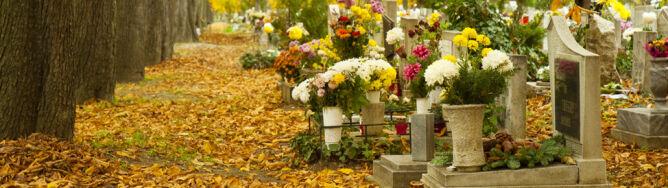 Pogoda na Wszystkich Świętych: pogodny 1 listopada, Zaduszki w deszczu